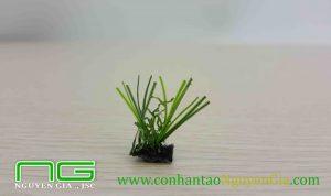 Ảnh chi tiết 1 cụm cỏ nhân tạo sân vườn NGL22